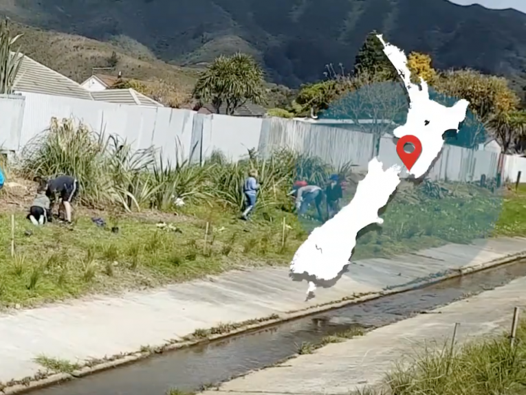 People planting plants along a small waterway with houses in the background and a map of New Zealand overlaid on the right-hand side