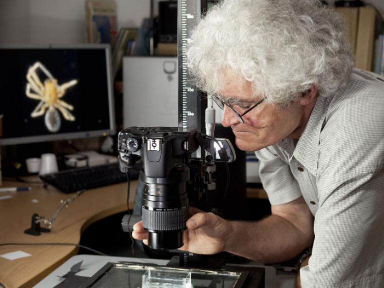 Researcher using a microscope