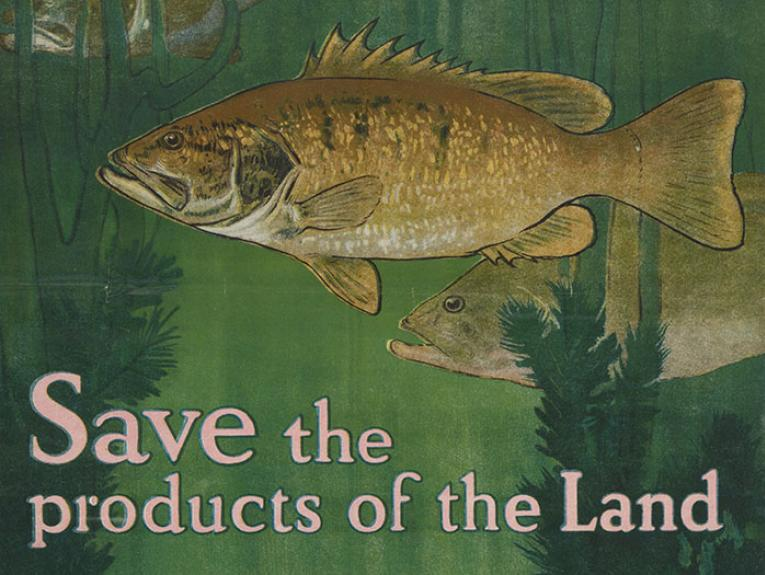 Poster with the words 'Save the products of the land, each more fish - they feed themselves'