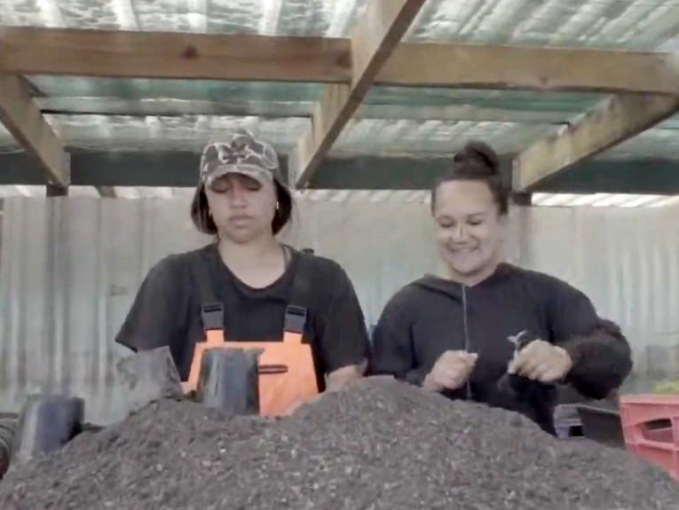 Two people sorting plants and seed on a table.