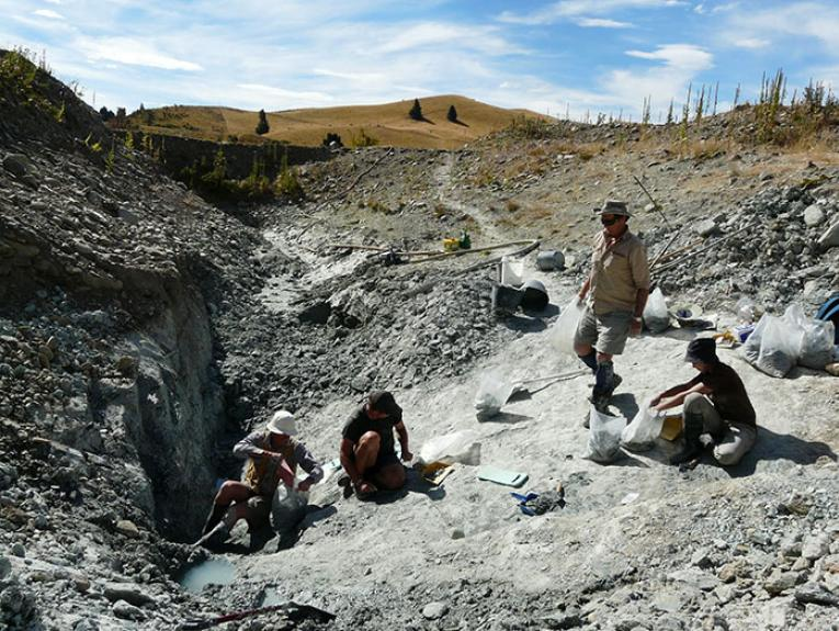 Group of people excavating