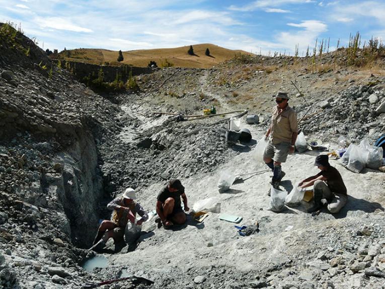 Group of people excavating