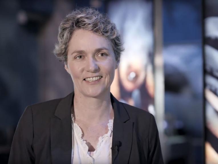 Susan Waugh, 2017, Te Papa