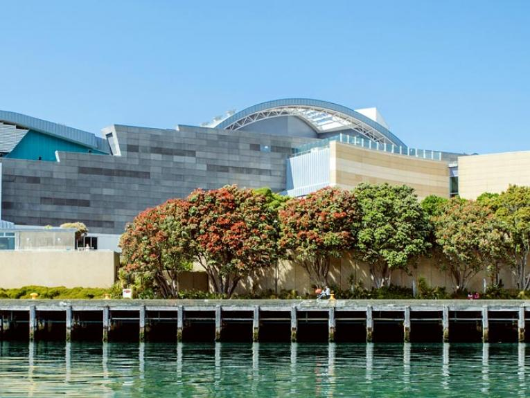Te Papa seen from the water