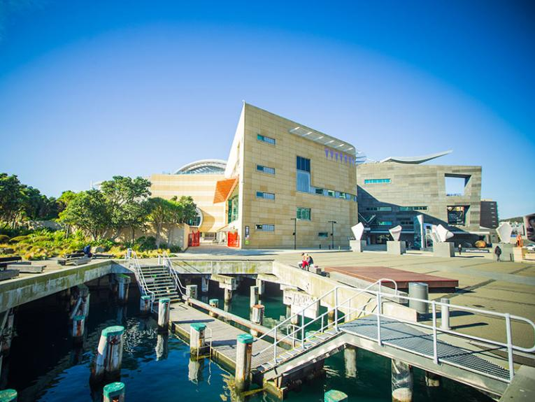 View of Te Papa building from the side, on a sunny day, showing the green trees of Bush City behind it and people sitting in the marina in front