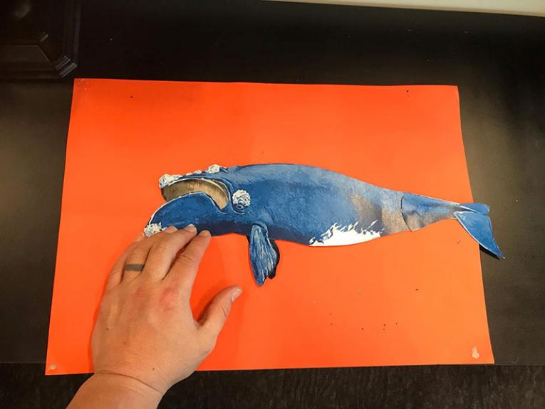 Hand holds up a cut out of a tohorā | southern right whale