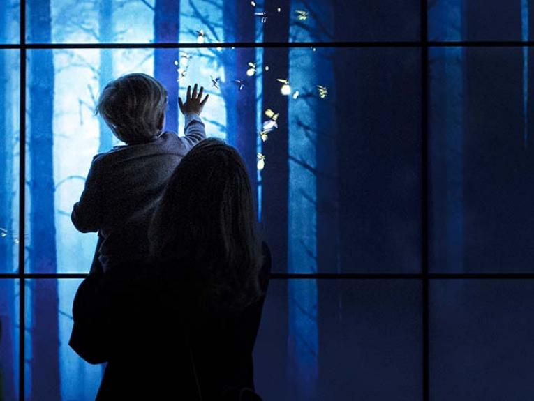 A child and his mother playing with an interactive firefly screen in the Bug Lab exhibition