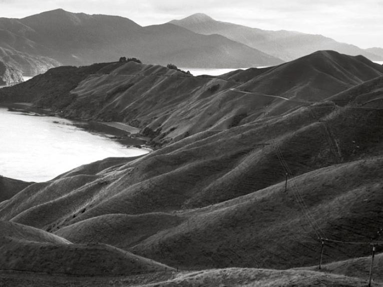 Te Kawau-a-toru (The pet shag of Kupe) French Pass, Marlborough, 2002 by Michael Hall