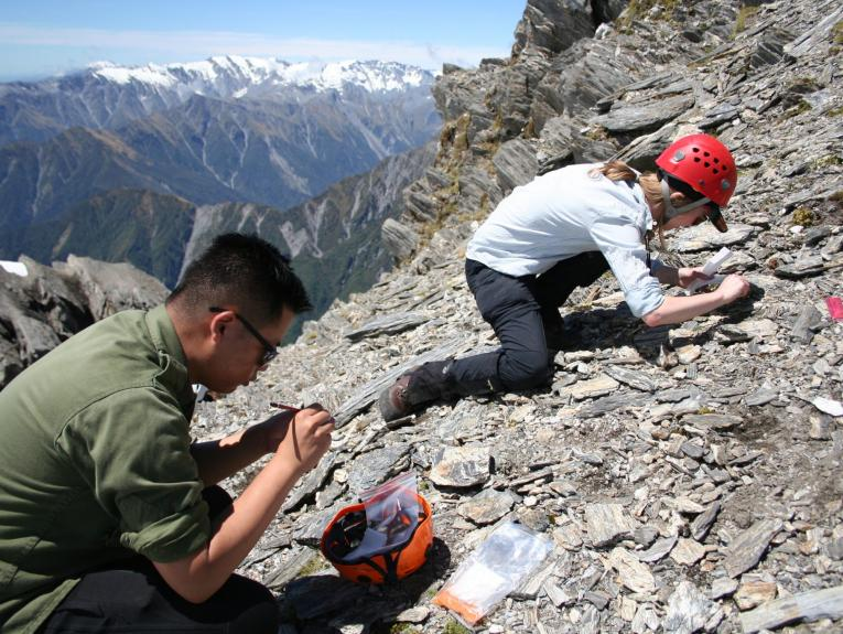 Two people crouched on the side of a mountain collecting plants