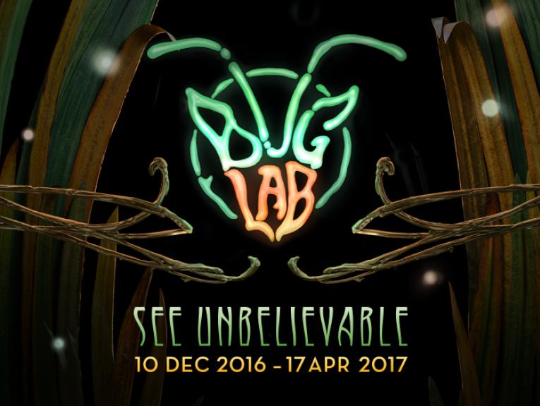 Bug Lab exhibition image