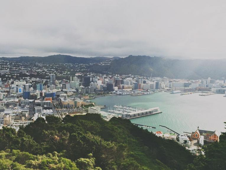 A view of Wellington city