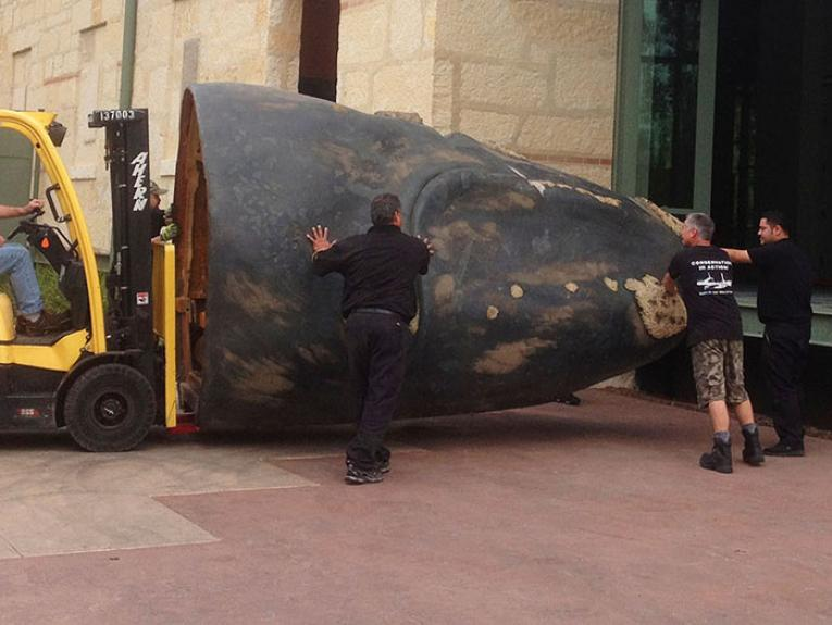 A forklift loads part of a whale prop into a building