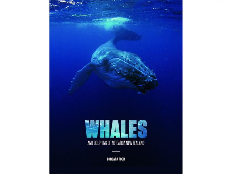 Whales and Dolphins of Aotearoa New Zealand - book cover