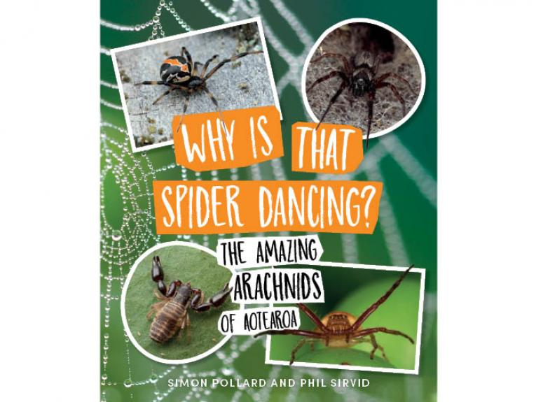 Why is that spider dancing?