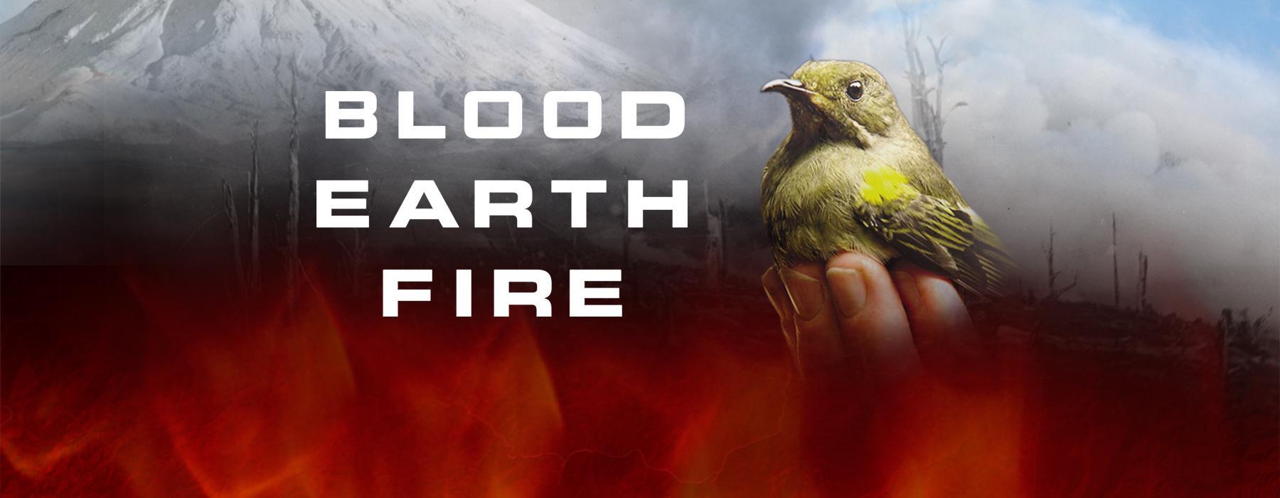 Bird, mountain and fire