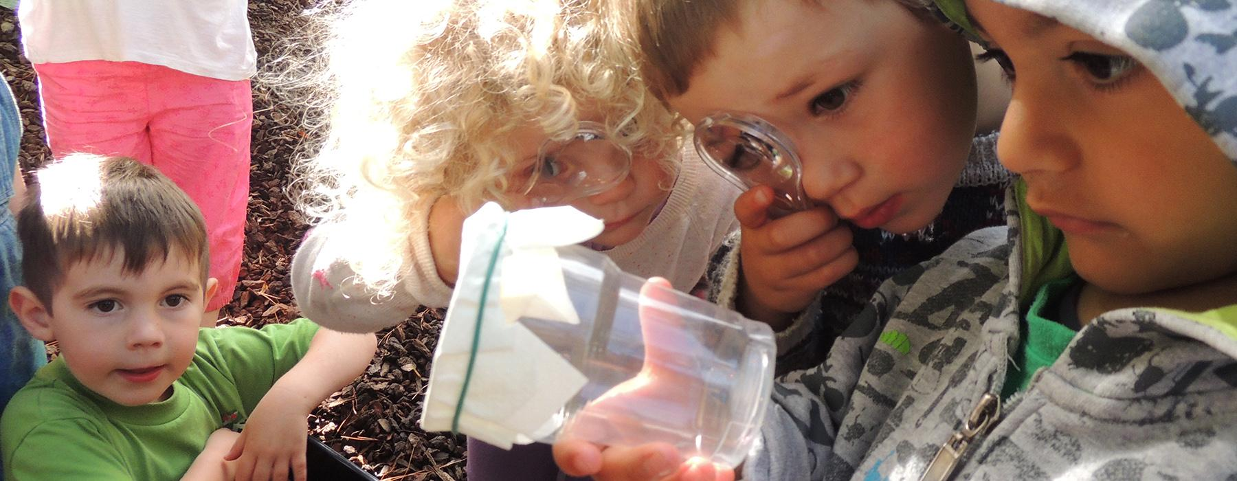 Young children using a magnifying glass to look at bugs