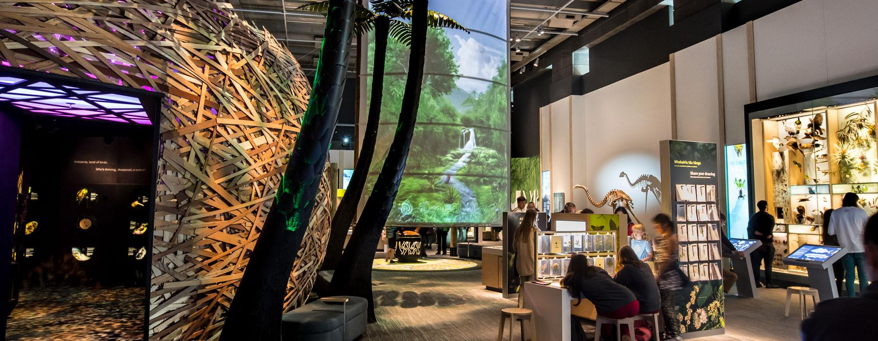 Visitors in the Te Taiao | Nature exhibition look at moa skeletons