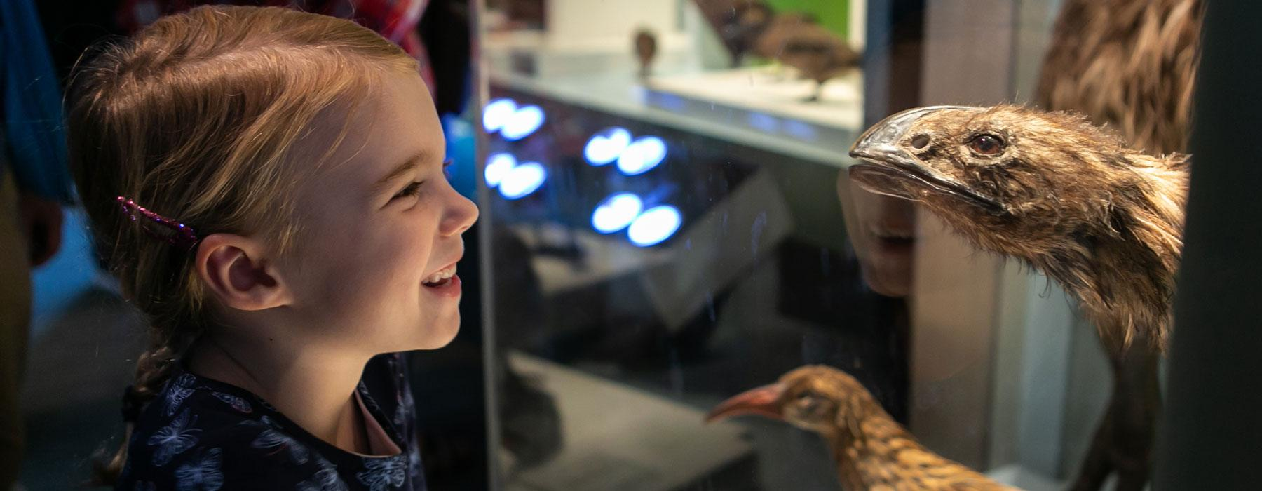 Visitors in the Te Taiao | Nature exhibition
