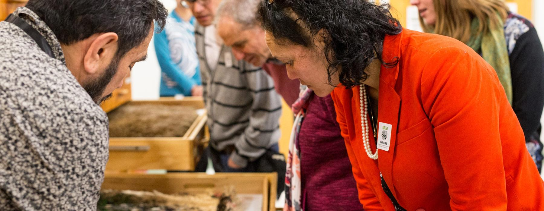 Cable Street Open Day, 2015. Photographed by Michael Hall, ©Te Papa
