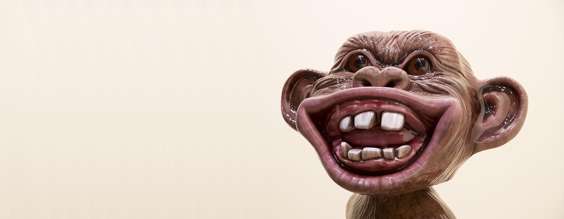 Shiny smiling monkey face