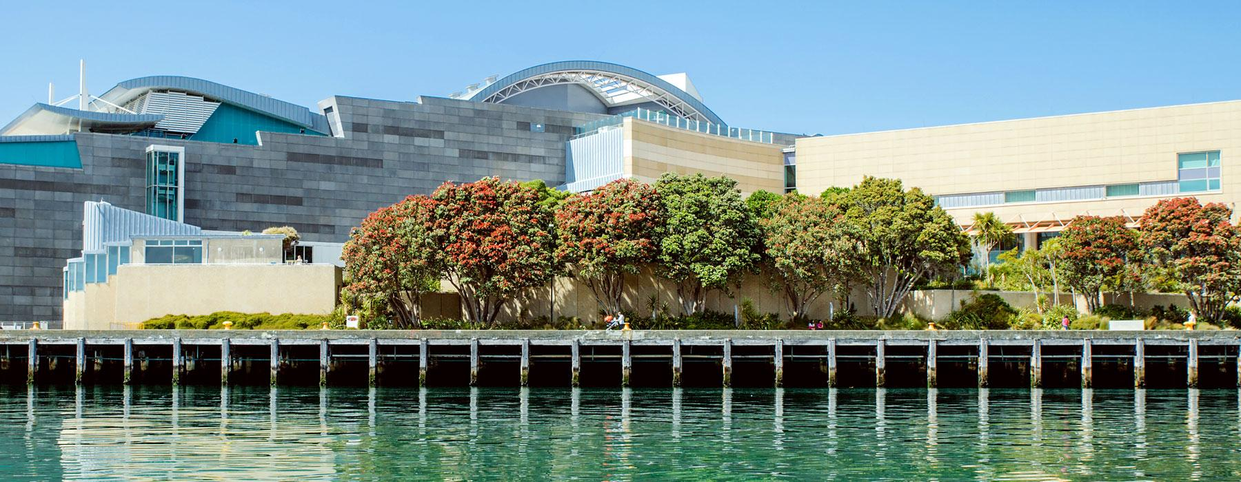 Te Papa from the water