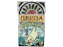 The Curioseum book