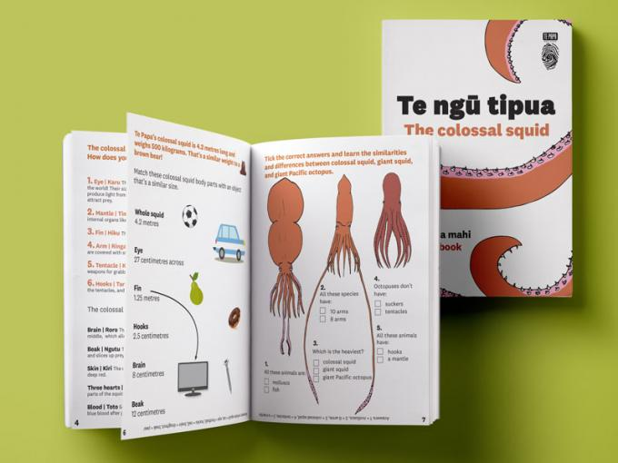 The inside of an activity book