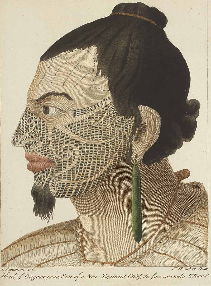 A watercolour painting of a Maori chief with a face tattoo